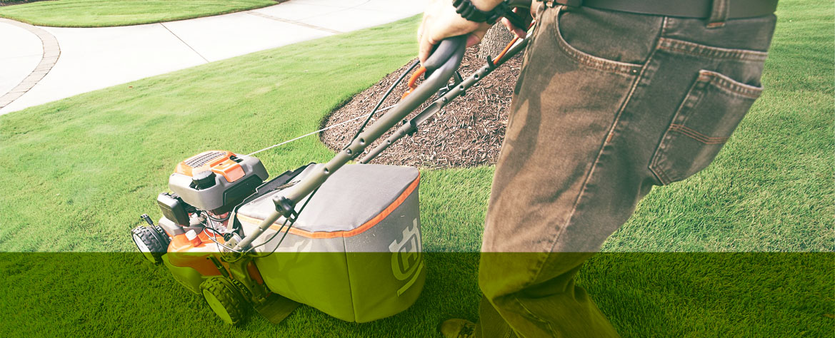 lawn maintainence image